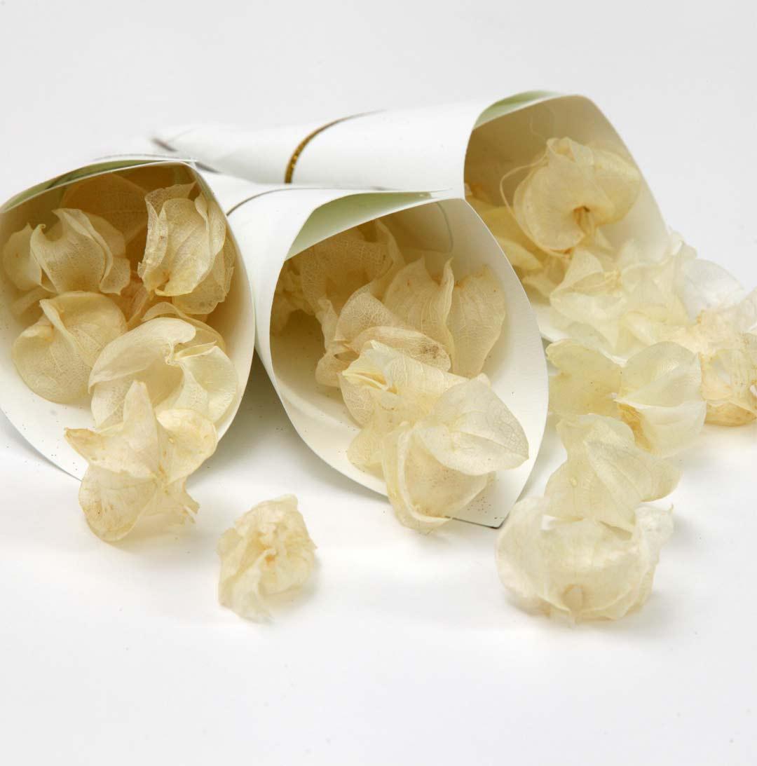 Cone de arroz para casamento